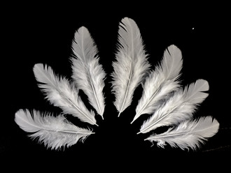 1 Pack - Natural White Hen Saddle Feathers 0.10 Oz.