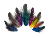 Colorful Mix Hen Saddle Half Bronze Feathers 0.10 Oz.