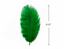 "10 Pieces - 8-10"" Kelly Green Ostrich Dyed Drabs Feathers"