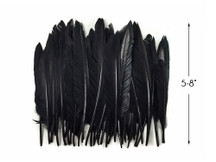 1 Pack - Black Duck Primary Wing Pointer Feathers 0.50 Oz.