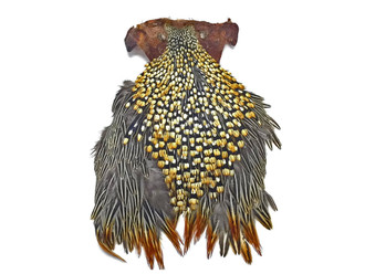 Grade B Natural Gold Jungle Cock Cape Complete Skin Pelt With Feather