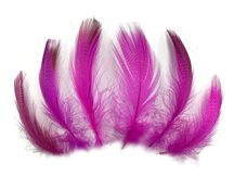 Magenta duck feathers