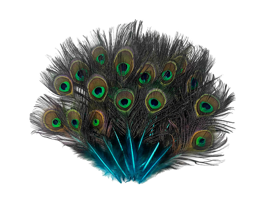 Blue Duck Feathers Turquoise Blue Duck Cochettes Wholesale Loose Feathers Bulk 500 Pieces Craft Supply : 144