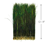 """4 Inch Strip - 12-14"""" Natural Iridescent Green Peacock Flue / Herl Strung Feathers"""