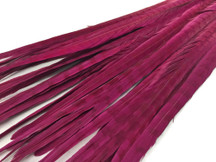 "20-22"" Burgundy Long Ringneck Pheasant Tail Wholesale Feathers (Bulk)"