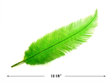 20 Pieces - Lime Green Mini Spads Ostrich Chick Body Feathers
