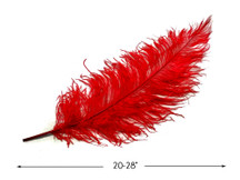 "10 Pieces - 20-28"" Red Ostrich Spads Large Wing Feathers"