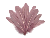 1/4 Lb - 1 Pack - Taupe Goose Pallet Parried Soft Wing Quill Wholesale Feathers (Bulk)