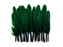 1 Pack - Hunter Green Dyed Duck Cochettes Loose Wing Quill Feather 0.30 Oz.