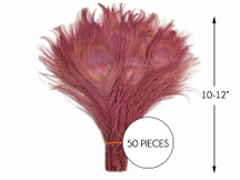 """50 Pieces – Taupe Bleached & Dyed Peacock Tail Eye Wholesale Feathers (Bulk) 10-12"""" Long"""