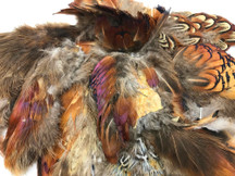 Collection 22 - Mix Random Feather Sample Pack (Bulk)