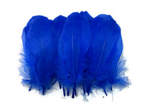 1 Pack - Royal Blue Goose Nagoire Loose Feather - 0.25 Oz
