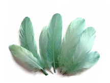 1/4 Lb - Aqua Blue Goose Nagoire Wholesale Feathers (Bulk)