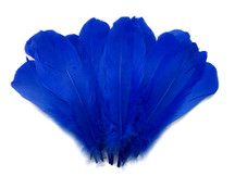 1/4 Lb - Royal Blue Goose Nagoire Wholesale Feathers (Bulk)