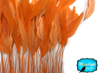 Orange Stripped Coque Tail Feathers Wholesale (Bulk)