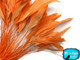 Tangerine orange skinny rooster feathers