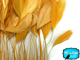 Gold Stripped Coque Tail Feathers Wholesale (Bulk)