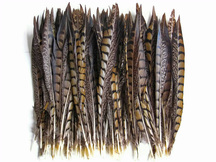 Long brown craft and decor wedding feathers