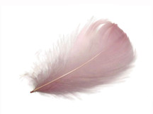"1 Pack - 2-3"" Taupe Goose Coquille Loose Feathers - 0.35 Oz."