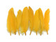 Mustard colored colorful craft feathers