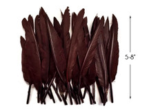 1 Pack - Brown Duck Primary Wing Pointer Feathers 0.50 Oz.