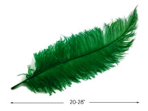 "10 Pieces - 20-28"" Kelly Green Ostrich Spads Large Wing Feathers"