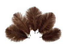 Wholesale Pack - Brown Ostrich Small Confetti Feathers (Bulk)