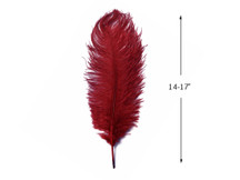 "10 Pieces - 14-17""  Burgundy Ostrich Dyed Drab Body Feathers"