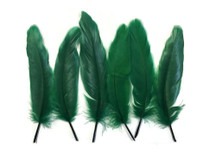 Forest green stiff quill tip feathers