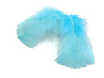 1 Pack - Light Blue Dyed Turkey T-Base triangle Body Plumage Feathers 0.50 Oz.