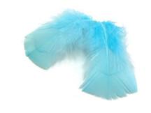1 Pack - Light Blue Dyed Turkey T-Base triangle Body Plumage Feathers 0.50 Oz.