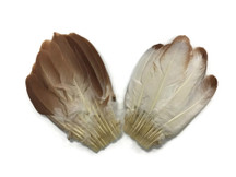 2 Pieces - Mini Natural Brown Duck Cochette Center Fan Feather Pads