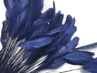 Deep midnight blue eyelash feathers