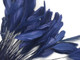 Deep midnight blue eyelash feathers