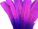 Beautiful pink and purple ombre feathers. These high quality rounded turkey tom wing feathers are perfect for baby mobiles, bedroom decor, crafts, headdresses, and centerpieces.