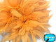 Peach Bleached And Dyed Strung Rooster Schlappen Wholesale Feathers (Bulk)