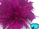 """Magenta 4"""" Strip Bleached and Dyed Rooster Schlappen Feathers Image 2"""