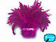 Bright pink colored fluffy rooster feathers