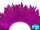 Bright pink dyed fluffy rooster feathers