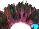 Light Pink Half Bronze Strung Rooster Schlappen Wholesale Feathers (Bulk)