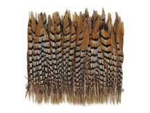 Multi-color patterned feathers for crafts