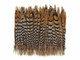 Patterned stiff natural color feathers for crafts