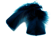 1 Pack - Peacock Blue Dyed Turkey T-Base triangle Body Plumage Feathers 0.50 Oz.