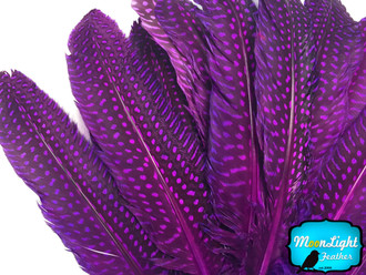 Purple Polka Dot Guinea Fowl Wing Quills Wholesale Feathers (Bulk)