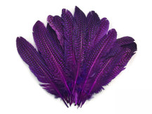 Dyed eggplant purple dotted feathers