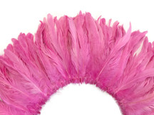 Baby pink rooster tail feathers