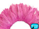 Bright pink strip of soft feathers