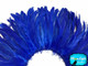 Cobalt blue strip of fluffy feathers