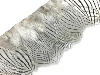 Natural White Silver Pheasant Plumage Feather Trim