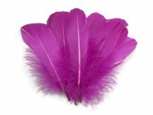 1/4 Lb - Magenta Goose Nagoire Wholesale Feathers (Bulk)